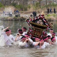 八雲神社 神輿の川入れ