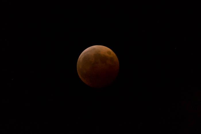皆既月食(2014年10月8日)を撮ったっ!