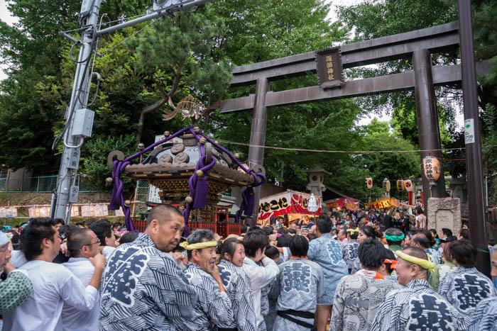 新宿諏訪神社で10年ぶりの「御神幸大祭」で宮入を見てきましたっ!