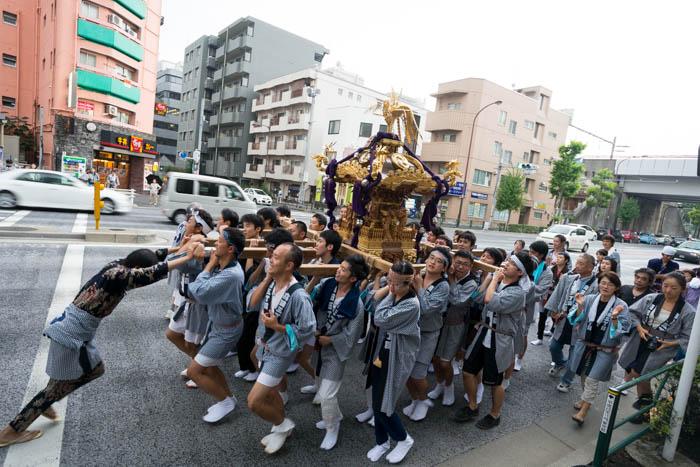 高田氷川神社例大祭の神輿を見てきましたっ!