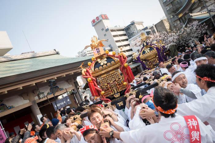 湯島天神「第59回梅まつり(平成28年)」で神輿を見てきましたっ!