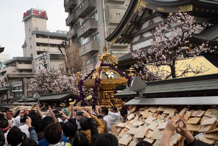 湯島天神「第60回梅まつり(平成29年)」で神輿の宮入を見てきたっ!