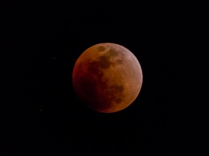 皆既月食(2018年1月31日)を撮ったっ!