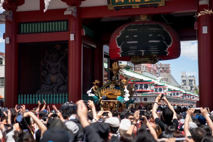 三社祭で神輿渡御を見てきましたっ!