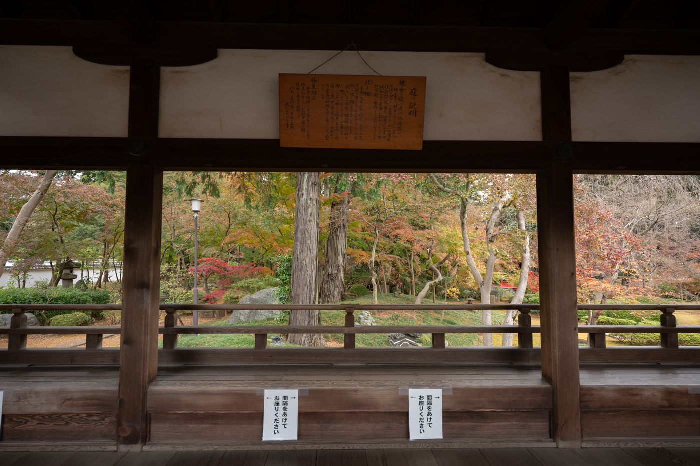 川越で魯肉飯を食べつつ喜多院で紅葉を見てきたっ!